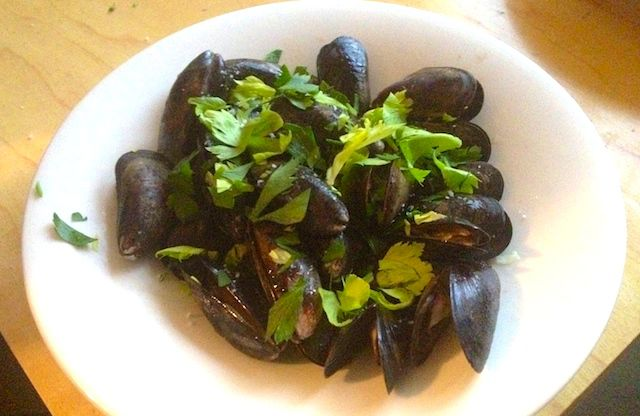 Mussels_8150